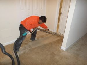 Mold Restoration Technician Cleaning