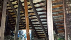 Water Damage Joists Repair From Water Damage and Mold Growth